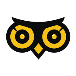 Owl Photo Studio