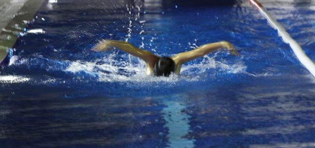 Sharks Swimming Academy Dubai